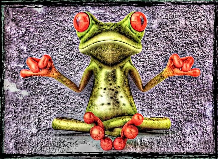 frog-885732_1280
